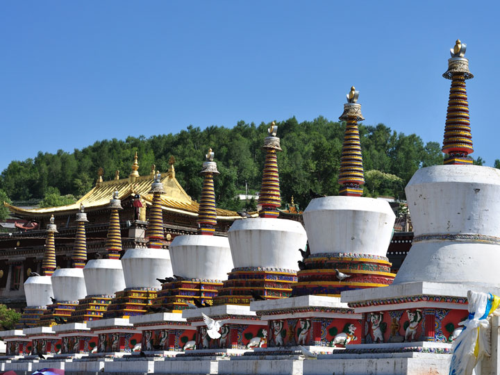 Monastero1-cultura-e-minoranze-etniche-qinghai-tibet-cina-emotions-magazine-rivista-viaggi-turismo_n5