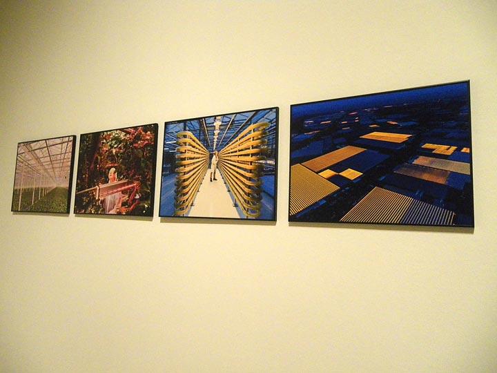 mostra world press photo roma palazzo delle esposizioni emotions magazine rivista viaggi rivista turismo