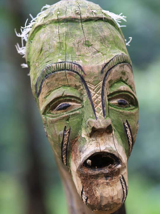 uno spirito della foresta emotions magazine rivista viaggi rivista turismo