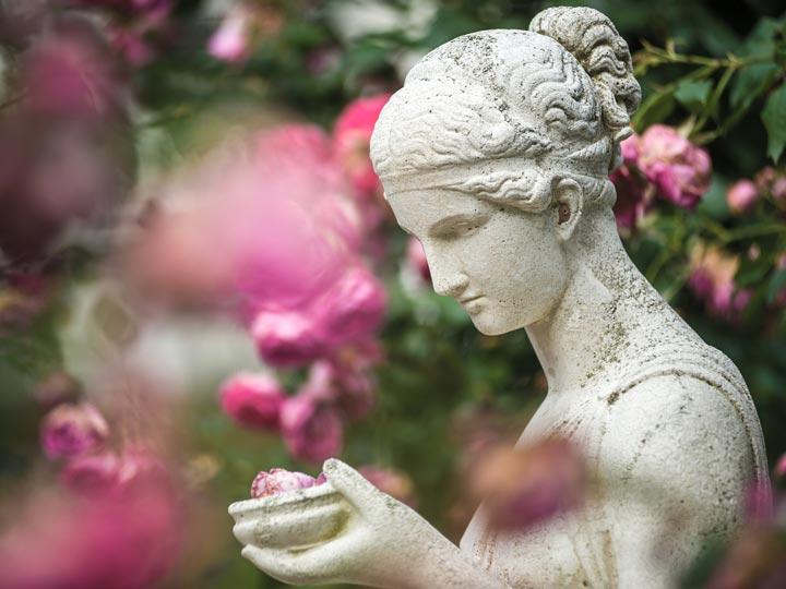 Baden-Baden - Giardino delle rose Beutig - viaggio baden germania - emotions magazine - rivista viaggi - rivista turismo
