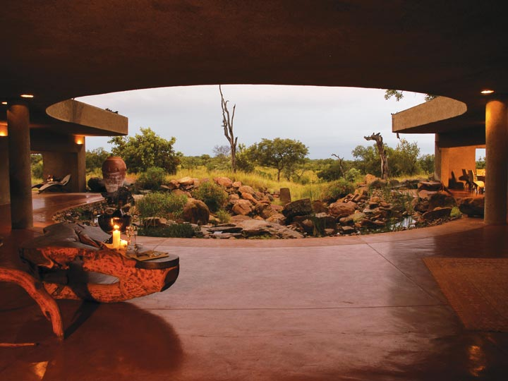 patio - viaggio savana sud africana - emotions magazine - rivista viaggi - rivista turismo