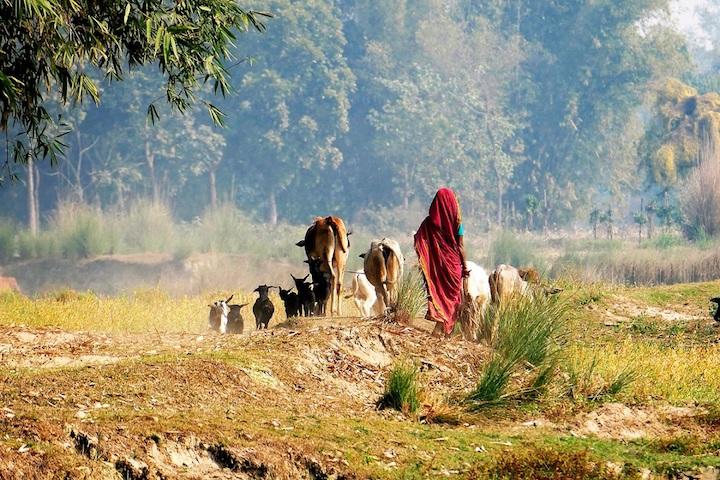 Bangladesh, minoranze etniche (1)