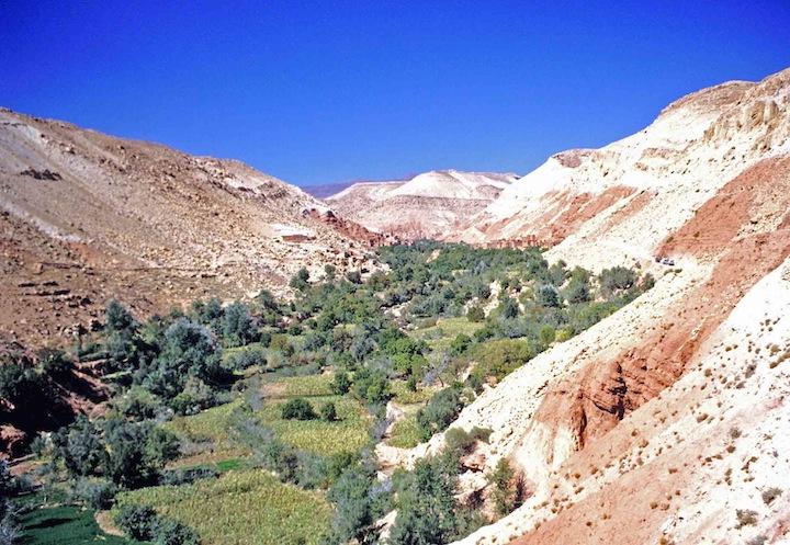 Marocco 08m oasi di montagna copia