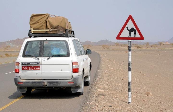 oman143m cartello copia